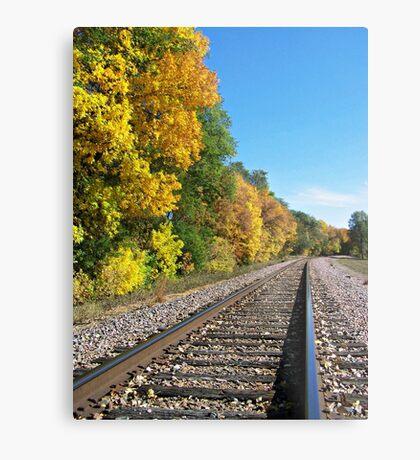 Scenic Railway Metal Print