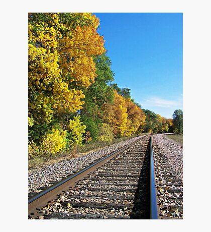 Scenic Railway Photographic Print