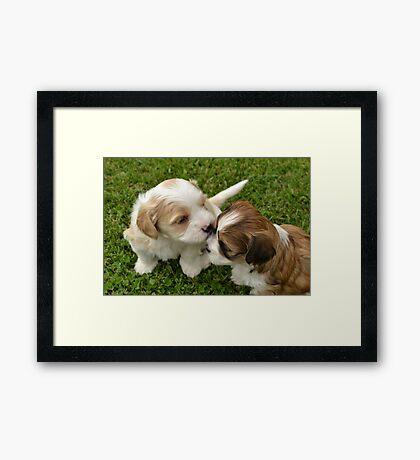 Sister/brother love :) Framed Print