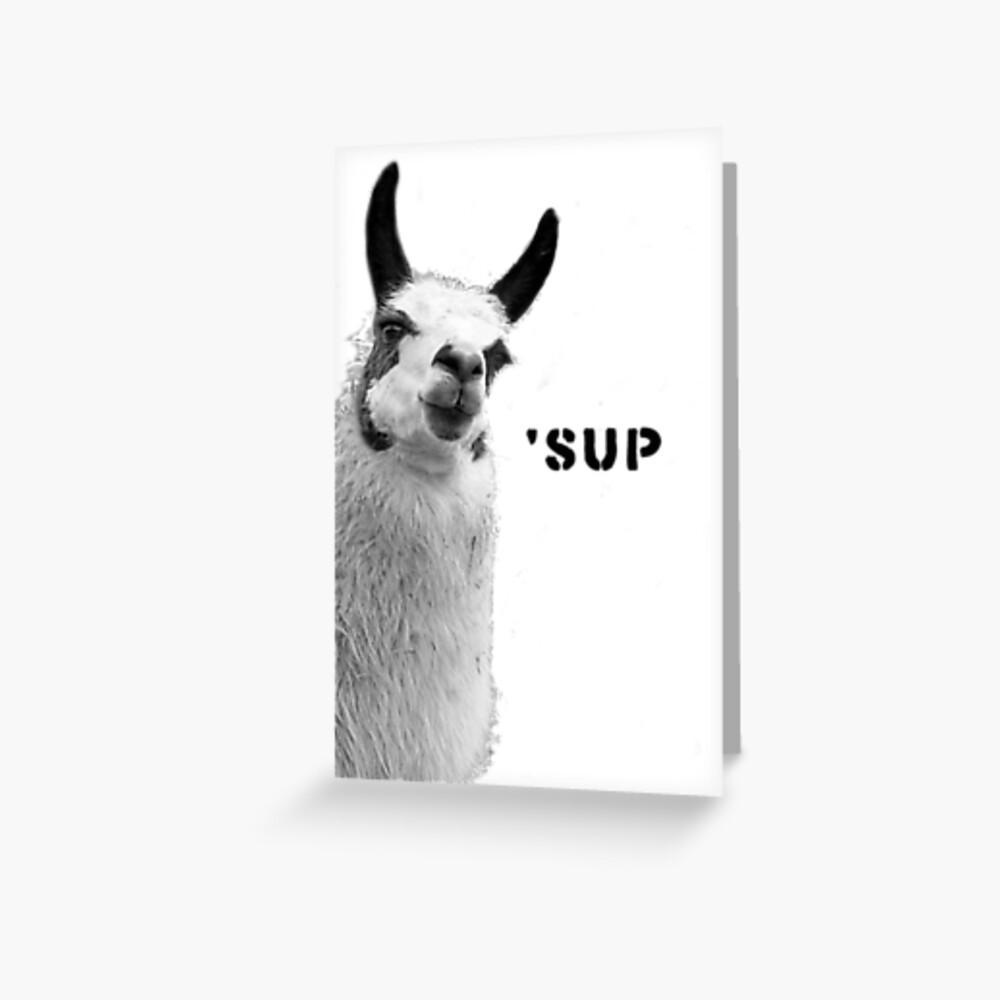 Cool Llama is Cool Greeting Card