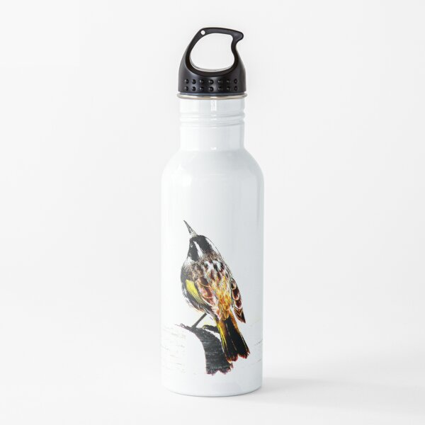 New Holland Honeyeater Bird, Bird Art, Bird Graphic Water Bottle