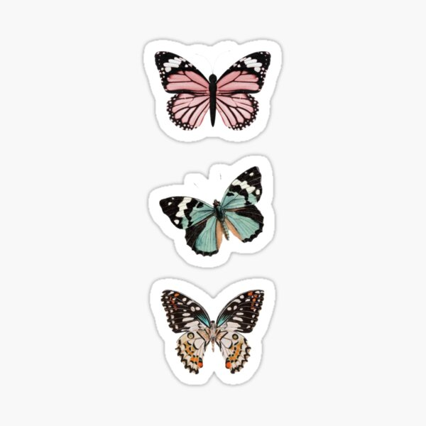 Beautiful Butterflies  Sticker