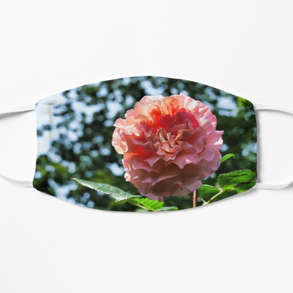 Pink Rose with bokeh Mask
