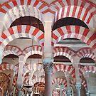 Grand Mosque, Cordoba, Spain by leystan