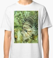 Striped Fish Classic T-Shirt