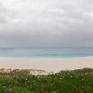 Shelley Beach, Albany Western Australia by gcdepiazzi