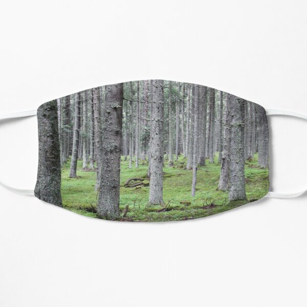 Silent pine tree forest with secular trees, deep in nature Mask