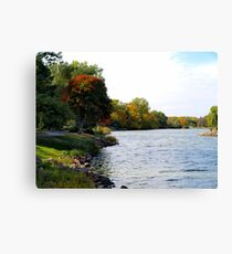 Fall on the Edge of Covell Lake Canvas Print
