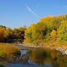 Autumn Colors Along Skunk Creek by Scott Hendricks
