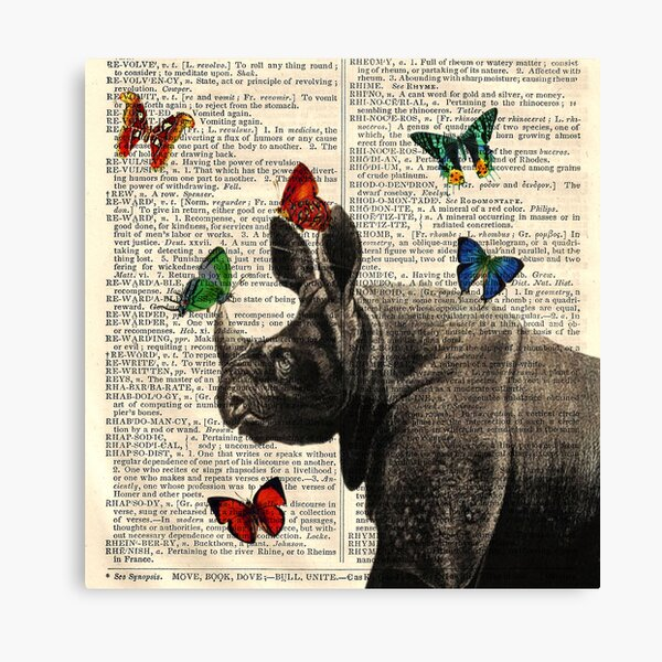 Antique Dictionary Rhinoceros Butterfly Print Canvas Print