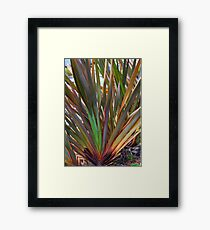 Rainbow Grass Framed Print