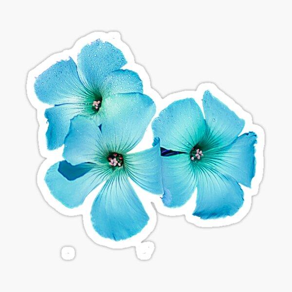 TURQUOISE FLOWER POWER  Sticker