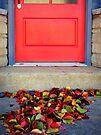 Leaves and Door by FrankieCat
