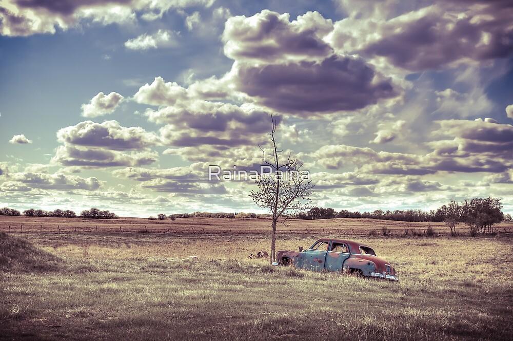 Antique car in rural landcape by RainaRaina