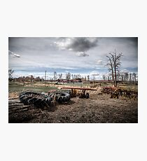 The Farmstead Photographic Print