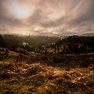 Tasmania  by Nathan Waddell