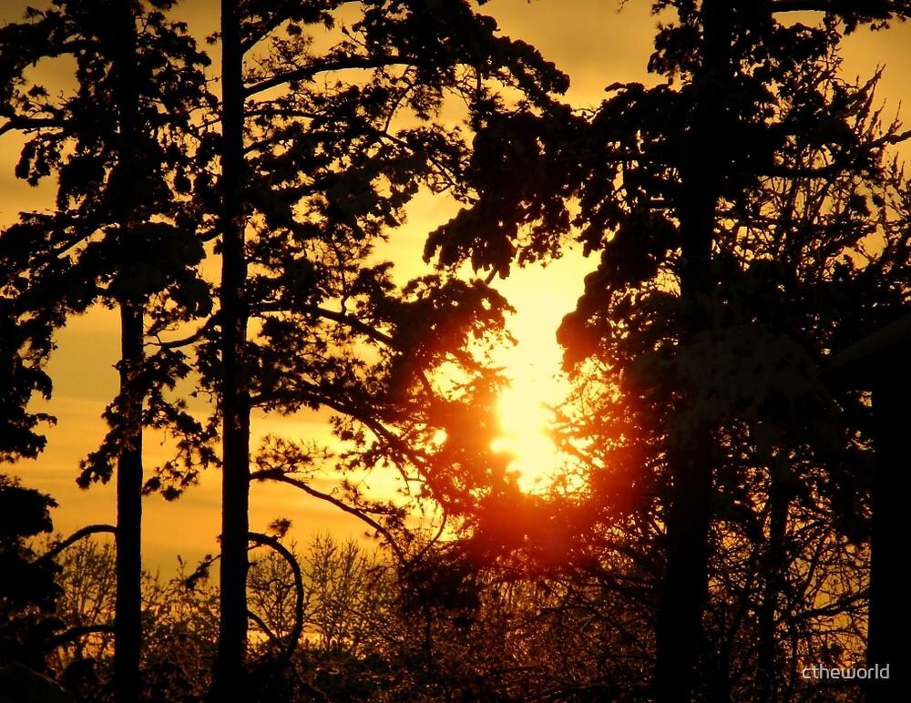 Golden Sunset      ^ by ctheworld