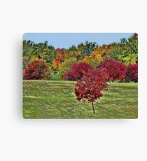 Natures Paint Brush Canvas Print