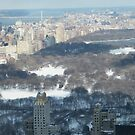 Central Park in Snow, Aerial View from Top of the Rock Observation Deck, New York by lenspiro