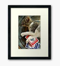 Card Playing Kitty Framed Print