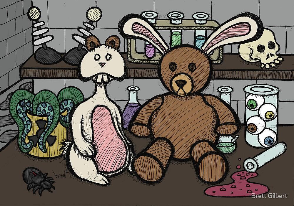 Teddy Bear and Bunny - Lab Experiments 2 by Brett Gilbert
