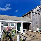 Sesuit Harbor outhouse barn by Owed To Nature