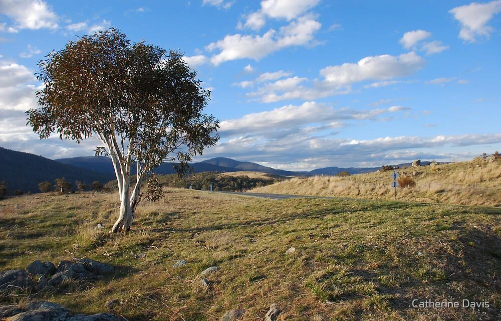 Jindabyne View by Catherine Davis