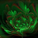 Pretty Flower For Paul by Jess Meacham