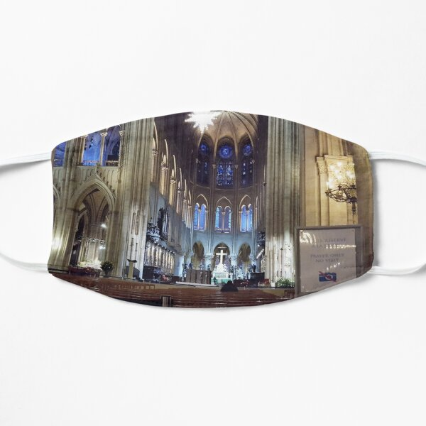 Paris Notre-Dame Cathedral Mask