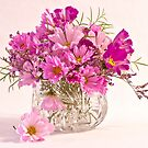 Cosmos - Summers Last Bouquet  by Sandra Foster