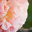 Frills - Birthday Card by Ellesscee