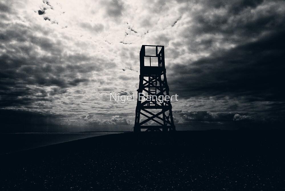 Police Tower by Nigel Bangert