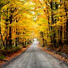 Country Road-II by BigD