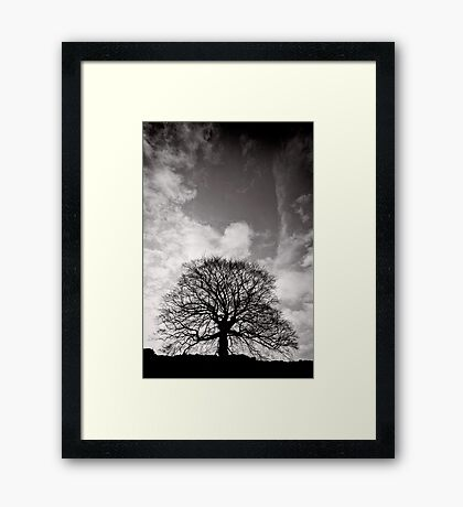 Tree of Triumph - portrait - Kenilworth - Great Britain Framed Print