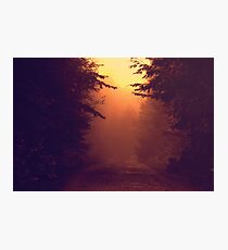 One Foggy Morning Photographic Print