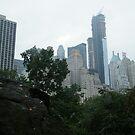 Central Park South Skyline, New York  by lenspiro