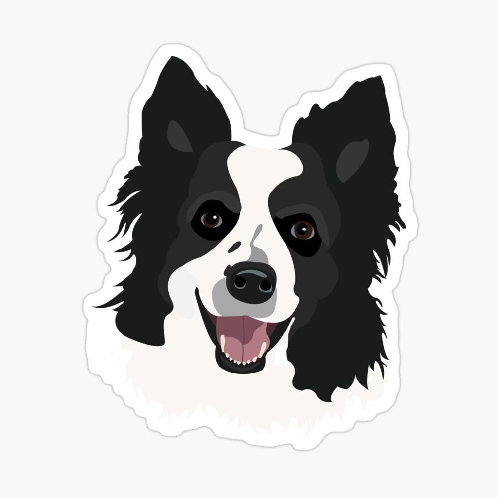 Black and White Border Collie Dog Face ...