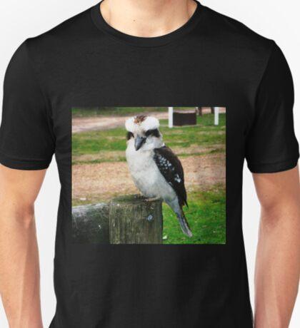 Kookaburra - Kingfisher family, good hunters T-Shirt