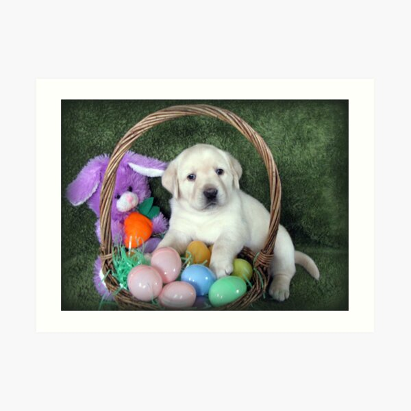 Easter?  There's nothing to eat! Art Print