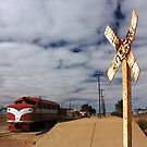 Marree Railway Station by Tim Coleman