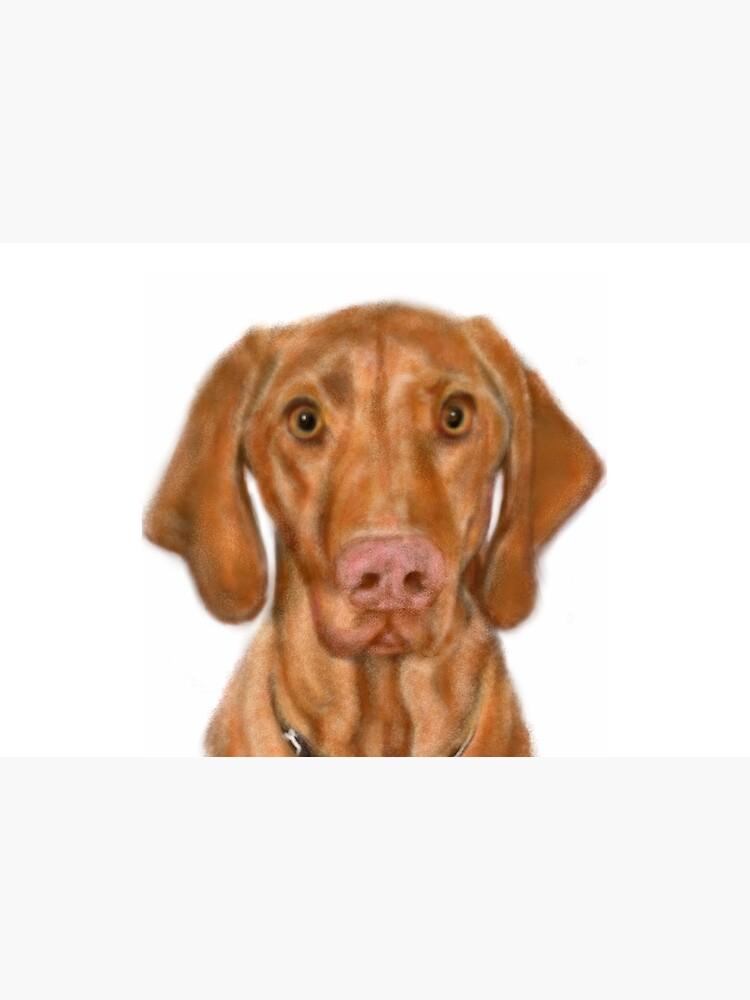 Young Handsome Vizsla Puppy Digital Art  by LITDigitalArt