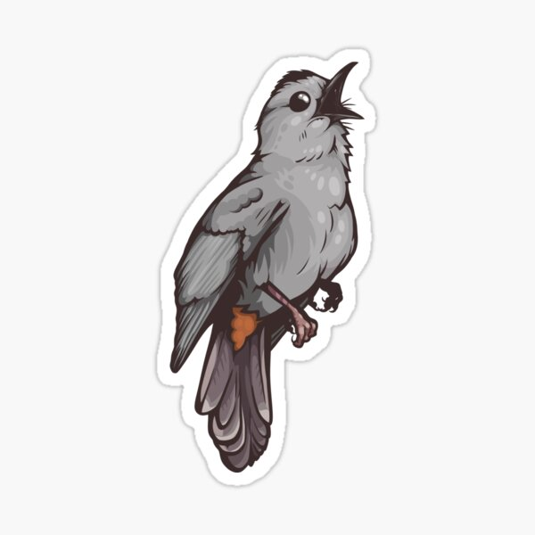 Grey Catbird Sticker
