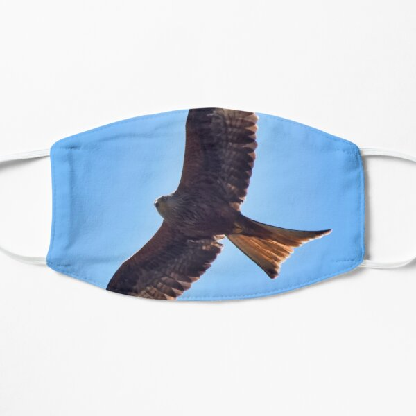 Red kite Mask