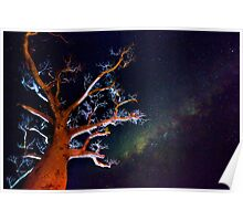 Reaching for the Milkyway Poster