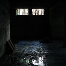 Light and Dark - Dark by Bharat Varma