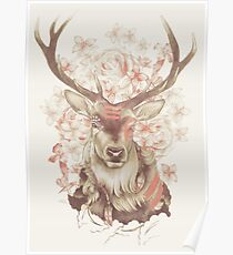 Stag of my Dreams Poster