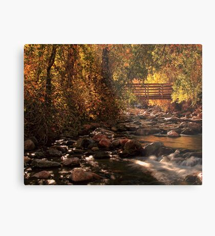 The Color Of Autumn Metal Print