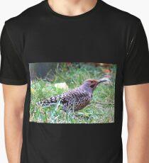 Northern Flicker Graphic T-Shirt