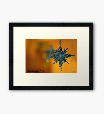 Season's Greetings ~ Framed Print