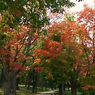 It's Beautiful Fall by quiltmaker